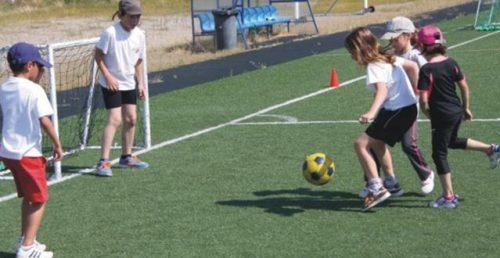 Escolas e Escolinhas de Desporto