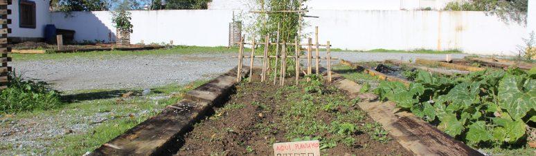 Horta - Centro Juvenil MN, 30.10.12 (PJC) (3)
