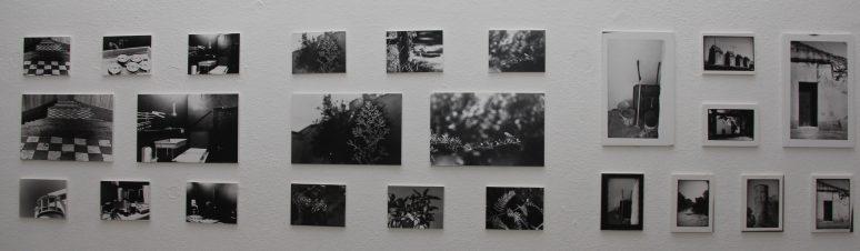Mostra Trab. Workshop Fotografia 08 - C. Juvenil, 04.03.2011 (MJR)